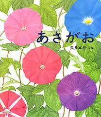 Morning glory (hb) (Japanese edition)